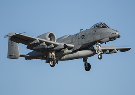 Fairchild - A-10 Thunderbolt II (81-0983) - AirComunity