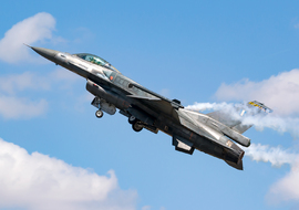 General Dynamics - F-16C Fighting Falcon (520) - regos