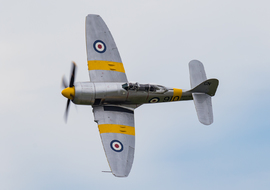 Hawker - Sea Fury T.20 (WG655) - Dr. Godo Gyorgy