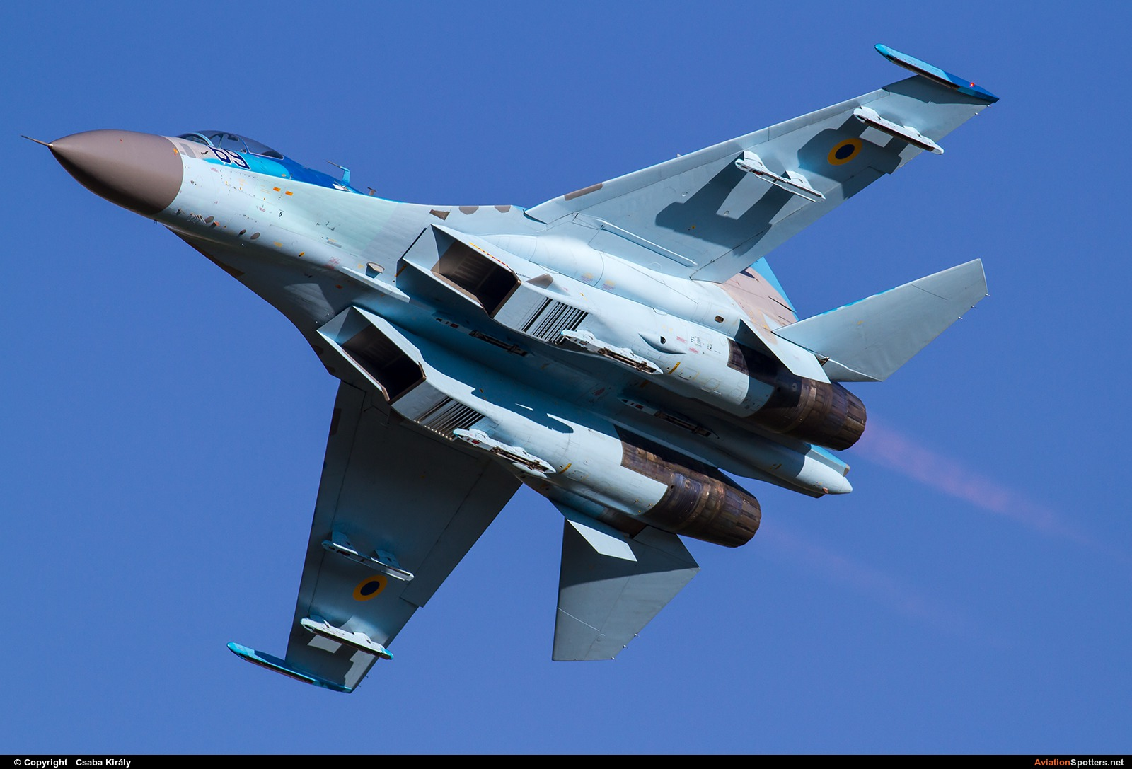 Ukraine - Air Force  -  Su-27UB  (69 BLUE) By Csaba Király (Csaba Kiraly)