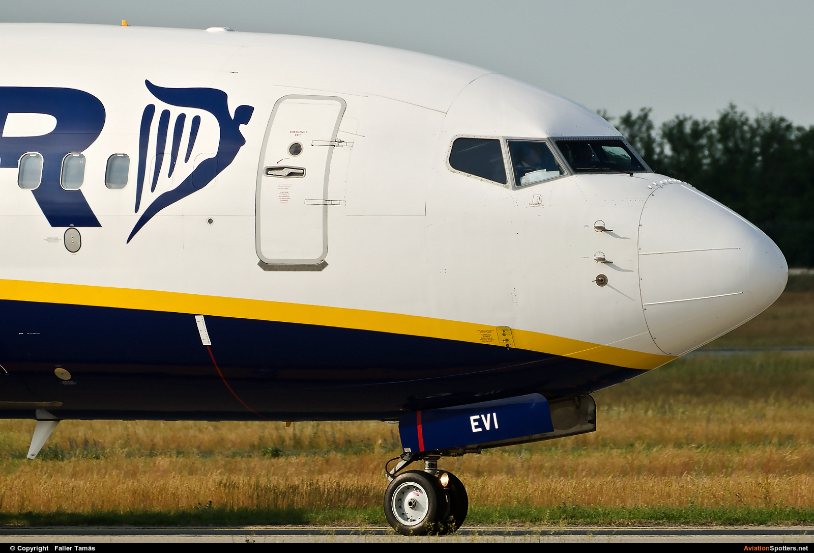 Ryanair  -  737-8AS  (EI-EVI) By Faller Tamás (fallto78)