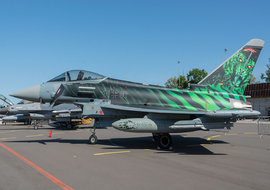 Eurofighter - Typhoon (31-00) - ryś